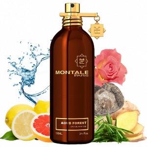 Montale Aoud Forest духи для женщин и мужчин